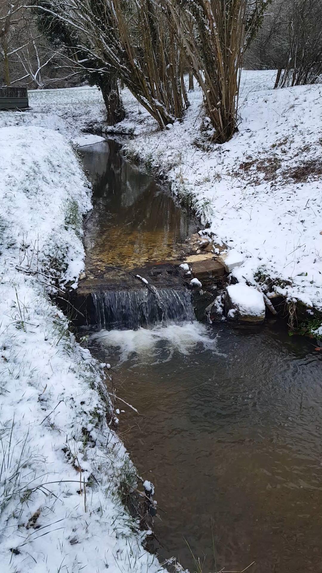 The Stream In Winter