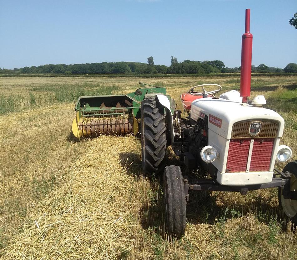 David Brown Vintage Tractor
